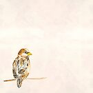 A Tiny Sparrow by Violet Lebeaux