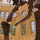 Dinosaur by Adria Bryant