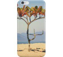 Brazilian Beach Tree iPhone Case/Skin