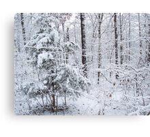 Snowy Forest Wonderland Canvas Print