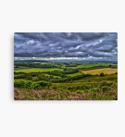 Northumberland Fields Canvas Print