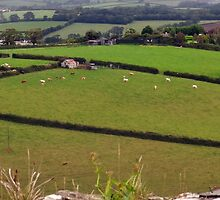 "UK: ""Fields of Launceston"", Cornwall by Kelly Sutherland"