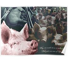 Why we could clone a million pigs from just one can of Spam! Poster