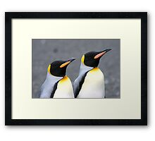 Penguin duo 1 Framed Print