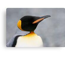 Solo penguin Metal Print