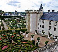 Villandry Castle - Loire Valley - France 3 by Alison Cornford-Matheson