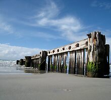Port Fairy by squires
