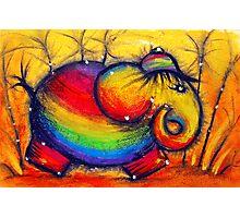 Rainbow Elephant Photographic Print