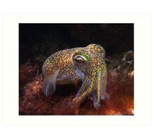 Dumpling Squid. Art Print