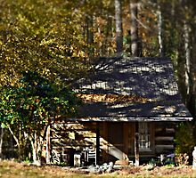 Little Cabin in the Woods by Scott Mitchell