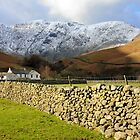 Dry Stone Wall at Wasdale by Nigel Donald