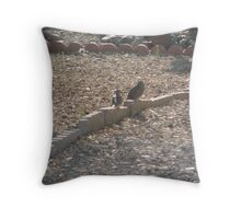 Doves in the early morn Throw Pillow