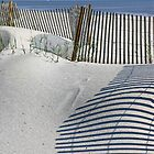 Fence Waves by Tibby Steedly