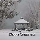 Gazebo in Winter Christmas Card by artgoddess