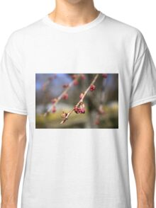 Spring Cherry Tree Blossoms Classic T-Shirt