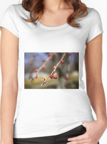 Spring Cherry Tree Blossoms Women's Fitted Scoop T-Shirt