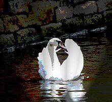 Meringue swan by rustumlongpig