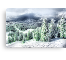 A Winters Dream Canvas Print