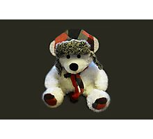 KISSABLE-HUGABLE-LOVEABLE-UNBELIEVEABLE-BEARY NICE BEAR PICTURE AND OR CARD ..SO CUTE.. Photographic Print