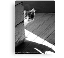 #633    Peeking Around The Corner Canvas Print
