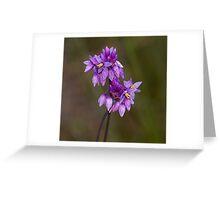 Vanilla Lily Greeting Card