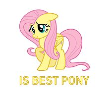 Fluttershy Is Best Pony - MLP FiM - Brony Photographic Print