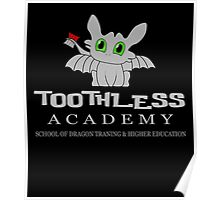 Toothless Academy Poster