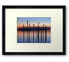 Seven Birds at Dusk Framed Print