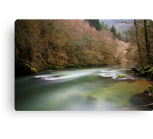 Albarine river Canvas Print