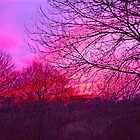 Mid Winter Sunset - Cheshire by John Brotheridge