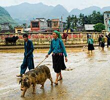 This little piggy went to market .... by Geraldine Lefoe