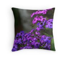 Between the shadow and the soul Throw Pillow