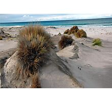 White sandy beach. Photographic Print