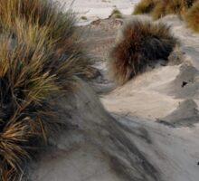 White sandy beach. Sticker