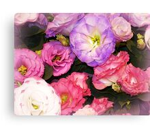 Lisianthus as beautiful  as any Flower Canvas Print
