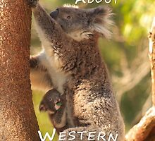 Koala & Cub - MAD About Western Australia (iPhone Case) by Dave Catley