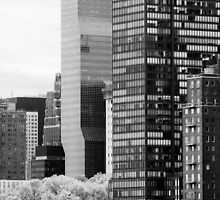 Manhattan View from Roosevelt Island by Judith Oppenheimer