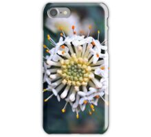 Wildflower iPhone Case/Skin