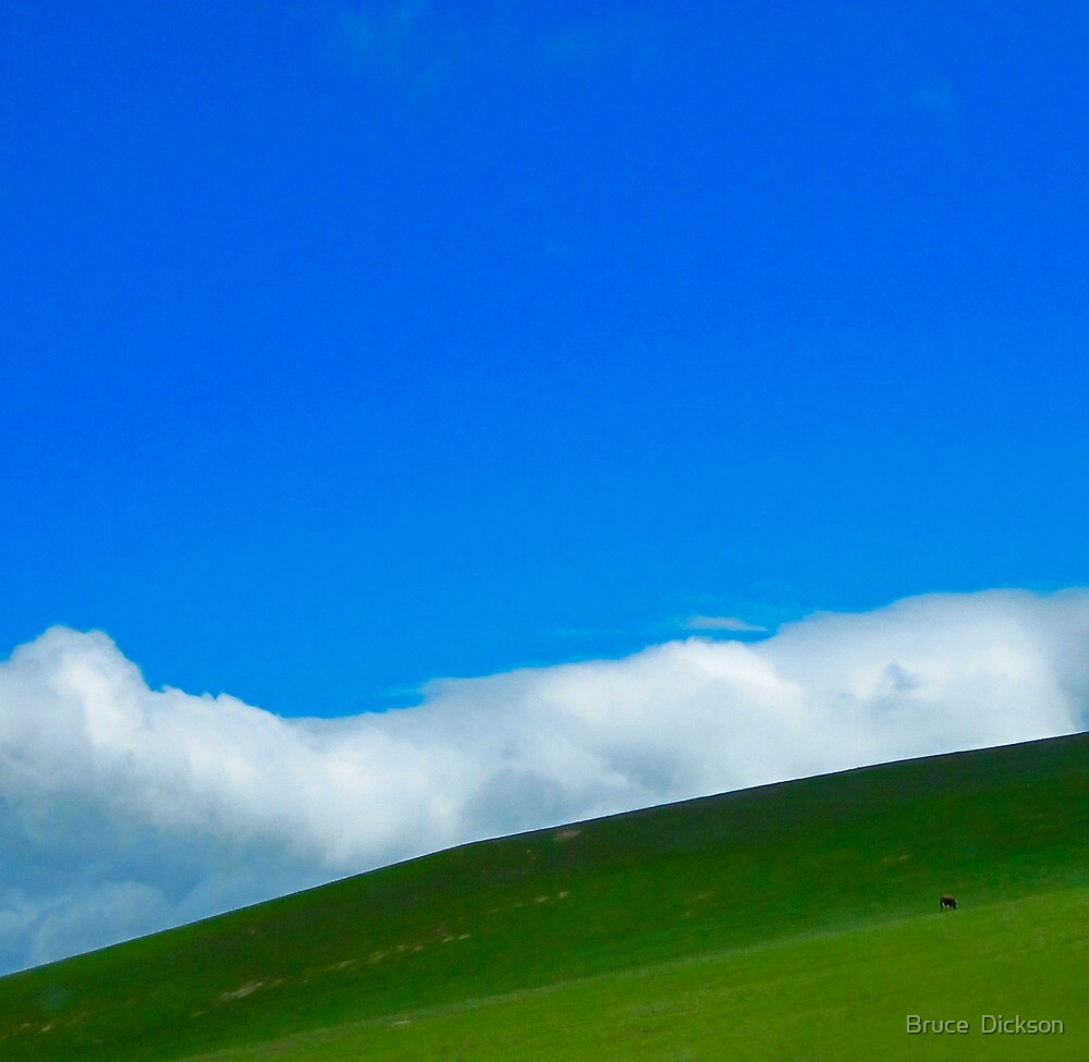 one cow hill by Bruce  Dickson