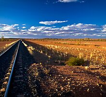 Alice to Adelaide Railway, 11 September 2008 by Steven Pearce