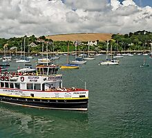 The MV Princessa, Falmouth Harbour by Rod Johnson