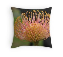 Leucospermum cuneiforme  Throw Pillow