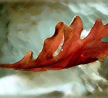 fallen leaf by Linda Sannuti