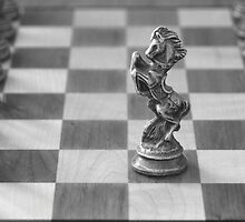 Chess Pieces by Great Divide  Photography
