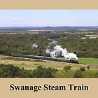 Swanage Railway Steam Train by Jacqueline Turton