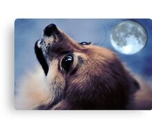 Call Of The Beast Canvas Print