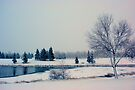 Woke up to Snow This Morning by Leanna Lomanski