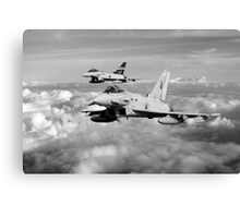 100 Years of 3 Squadron - Mono  Canvas Print