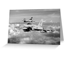 100 Years of 3 Squadron - Mono  Greeting Card