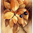 Fall Leaves and Berries by LinFrye